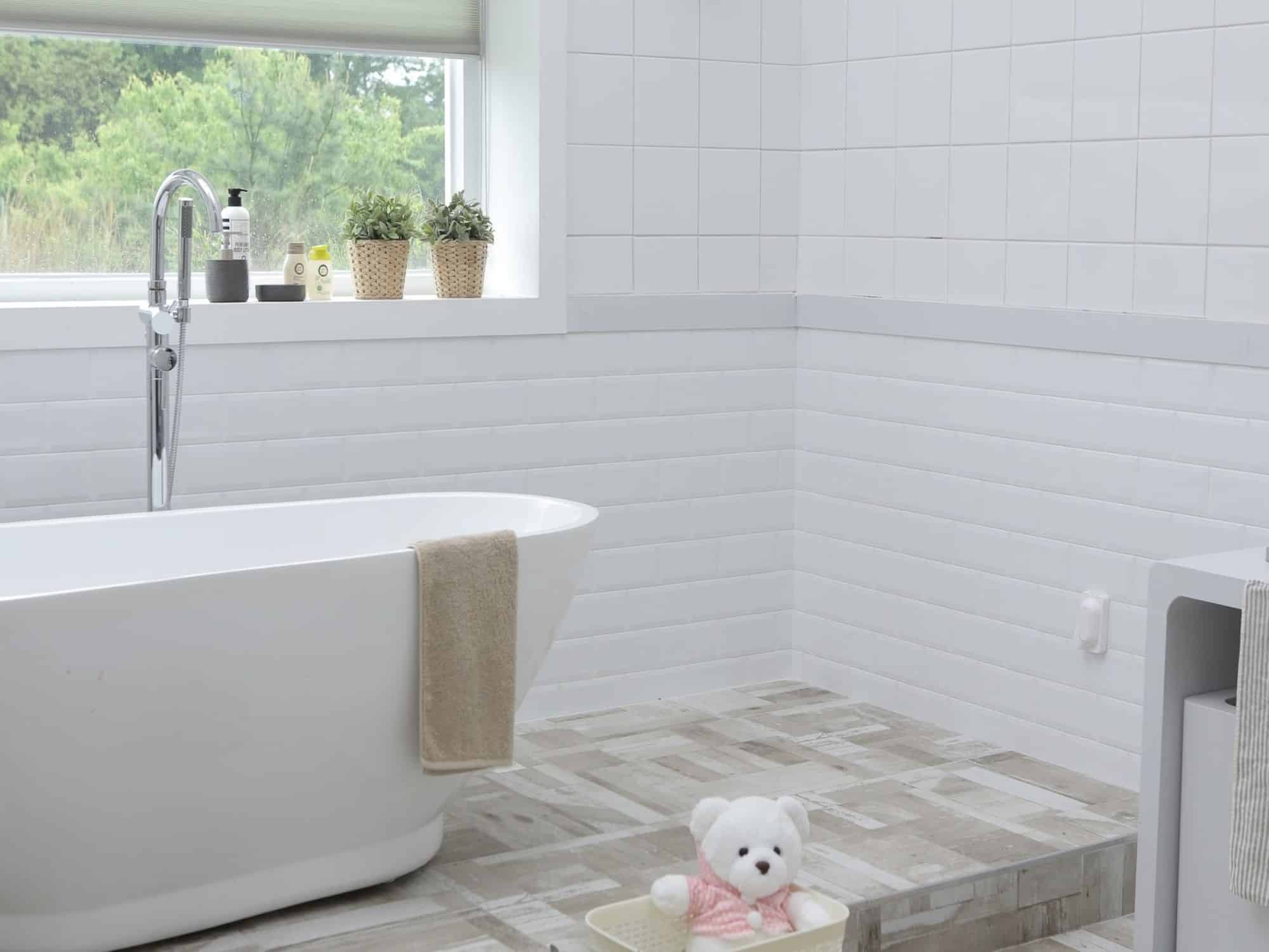 Mold and Water Safety in Your Home